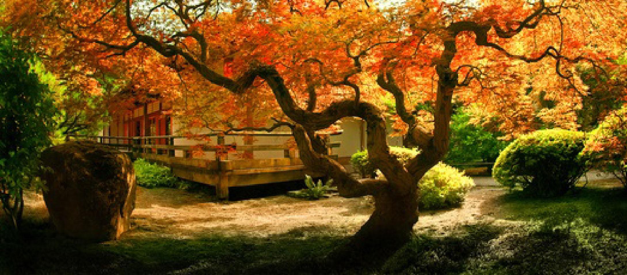 Jardin Zen Bioode Angers 49