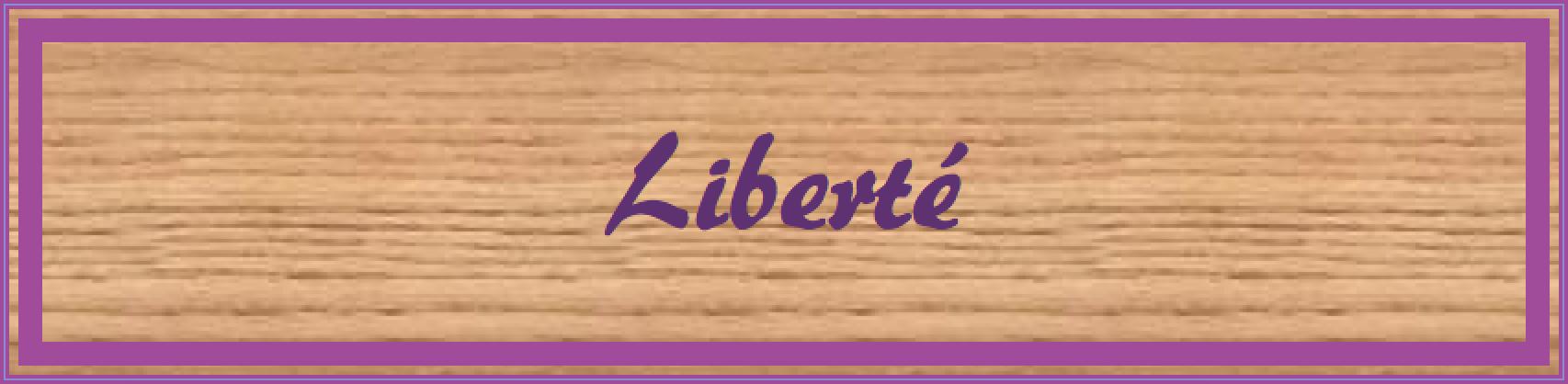 Bouton Carnet de sagesse 5 Bioode Angers
